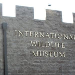 entrance sign of international wildlife museum